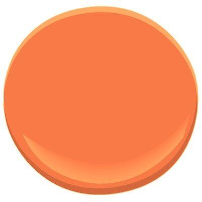 Tangy orange 2014 30 paint benjamin moore tangy orange for Benjamin moore paint colors 2014