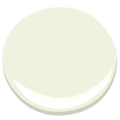 Minced Onion Paint Color