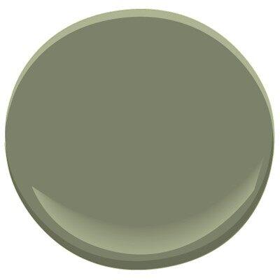 Gal pagos green 475 paint benjamin moore gal pagos green paint color details for Benjamin moore green exterior paint colors
