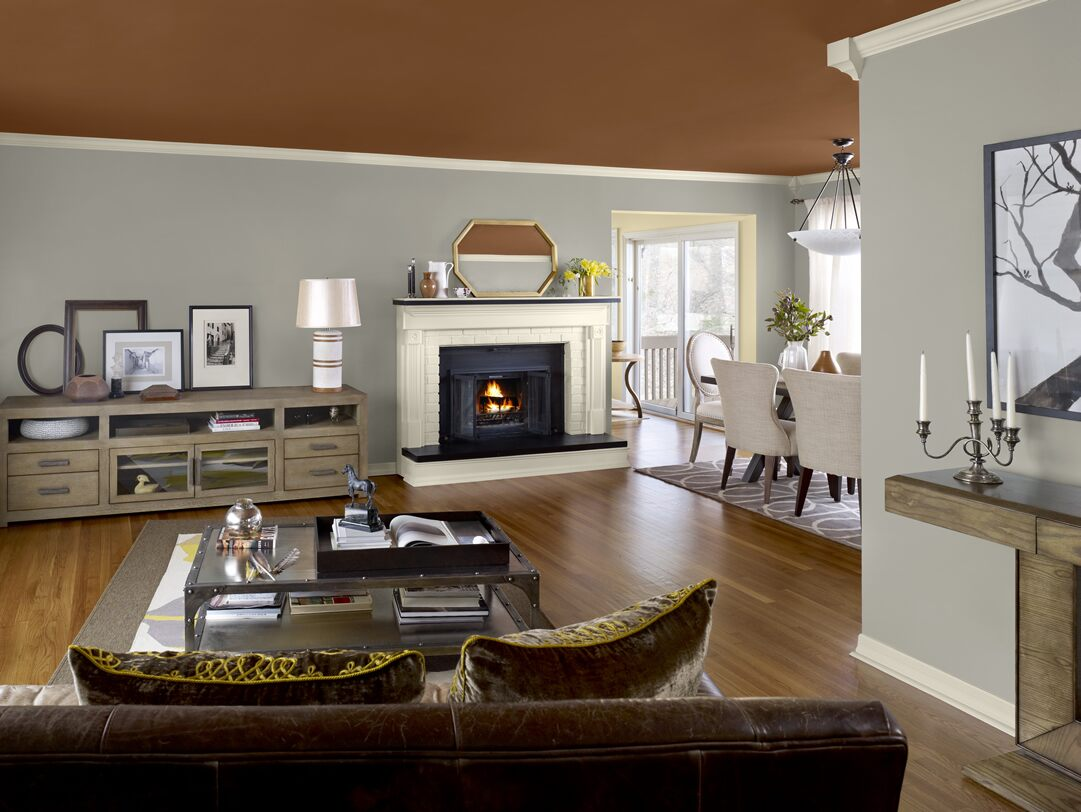 Home Color Trends Custom With Living Room Paint Colors Interior Images