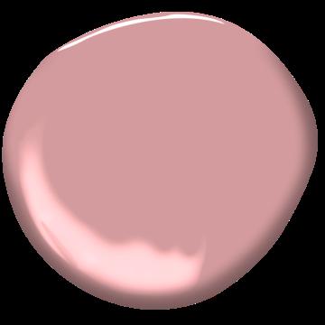 Palermo Rose