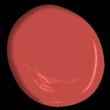 Géranium Orangé