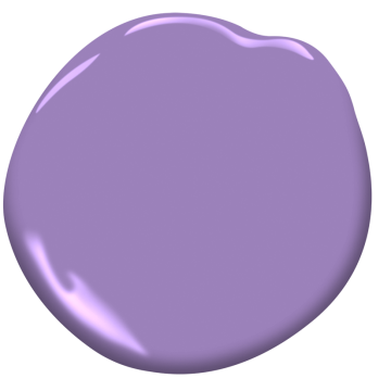 Crocus Petal Purple