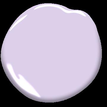Lily Lavender
