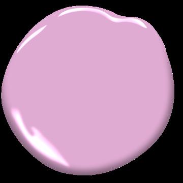 Pink Taffy