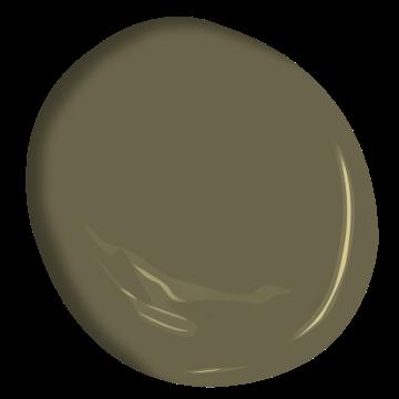 turtle green 2142-20   benjamin moore