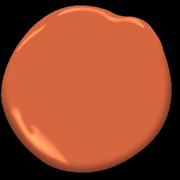 Orange Perroquet