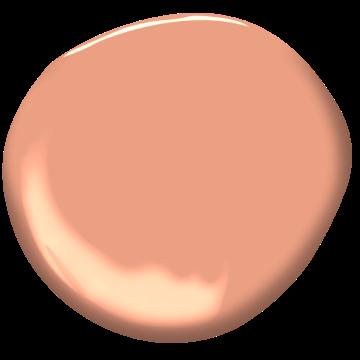 Épice Corail