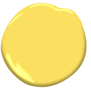 Fiesta Yellow