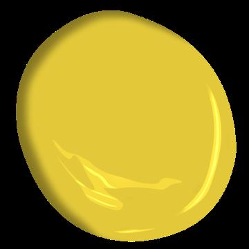 Yellow Hibiscus 357 Benjamin Moore