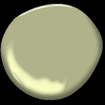 Herbe Séchée