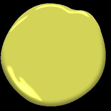 Pomme Surette